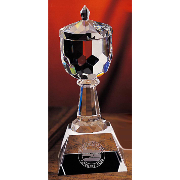 Trophy Cup Award